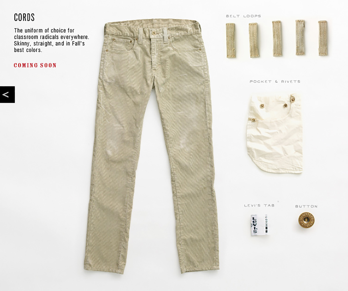 Levis_Website_Picture-6_APF